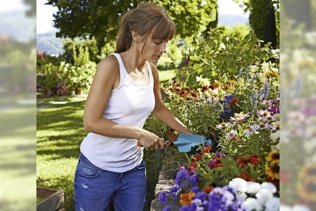 Lasst Blumen blühen