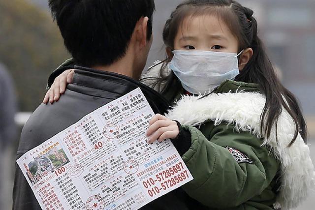 China verspricht mehr Klimaschutz