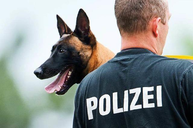 Schmerzensgeld nach Attacke durch Polizeihund