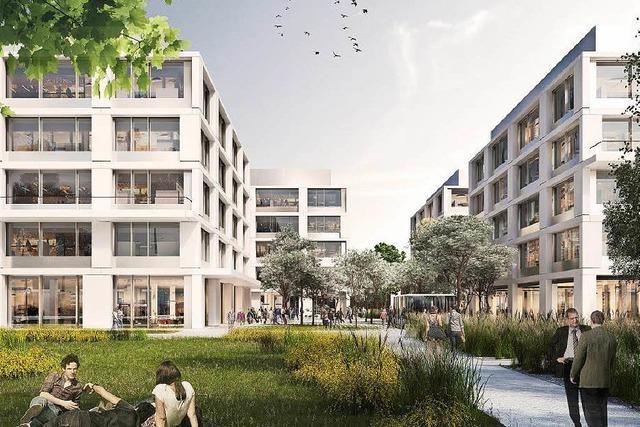 Basler Roche-Chef erklärt die Milliardenprojekte am Rheinknie