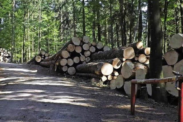 Hotzenwald wäre betroffen