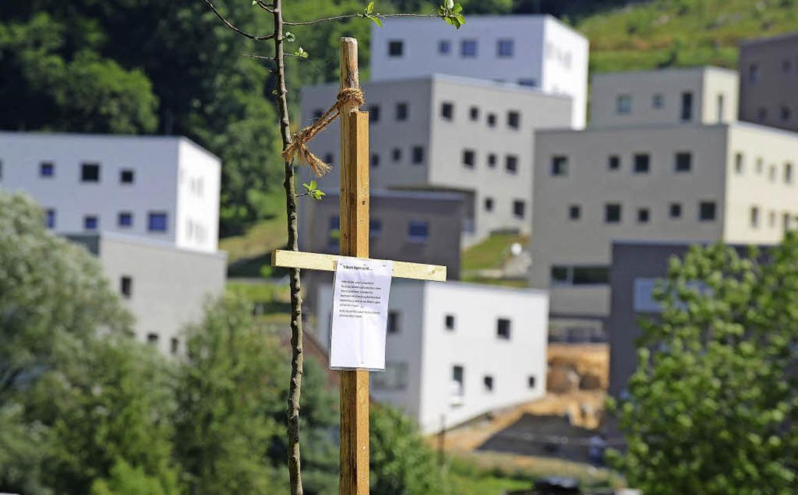 In den Kartauswiesen wurden Kreuze auf...d die Neubauten des Colleges zu sehen.  | Foto: Rita Eggstein