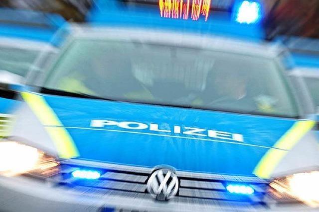 Autofahrer erschießt zwei Menschen - Festnahme
