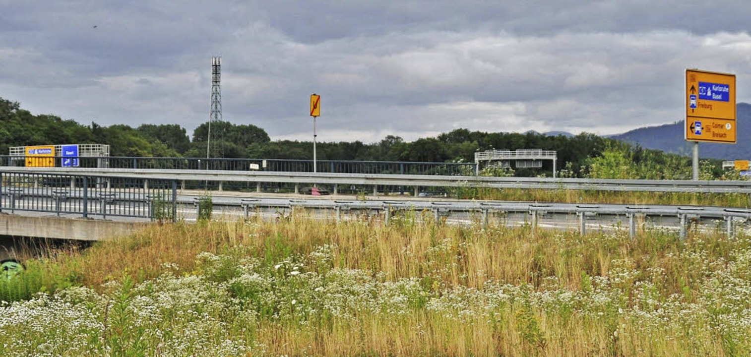 Im grünen Umfeld ist der neue Funkmast bei Umkirch kaum zu sehen.     Foto: Julius Steckmeister