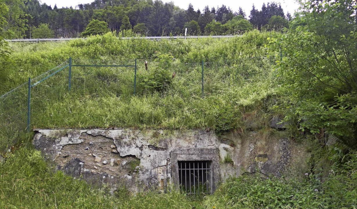 Dieses Foto zeigt die Stelle unterhalb...die Knappenquelle Wasser für Todtnau.   | Foto: Benno Dörflinger