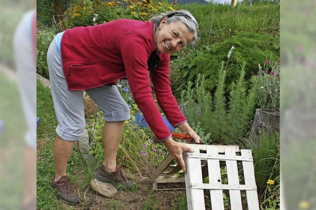 Die Ernte im Garten will verwertet sein