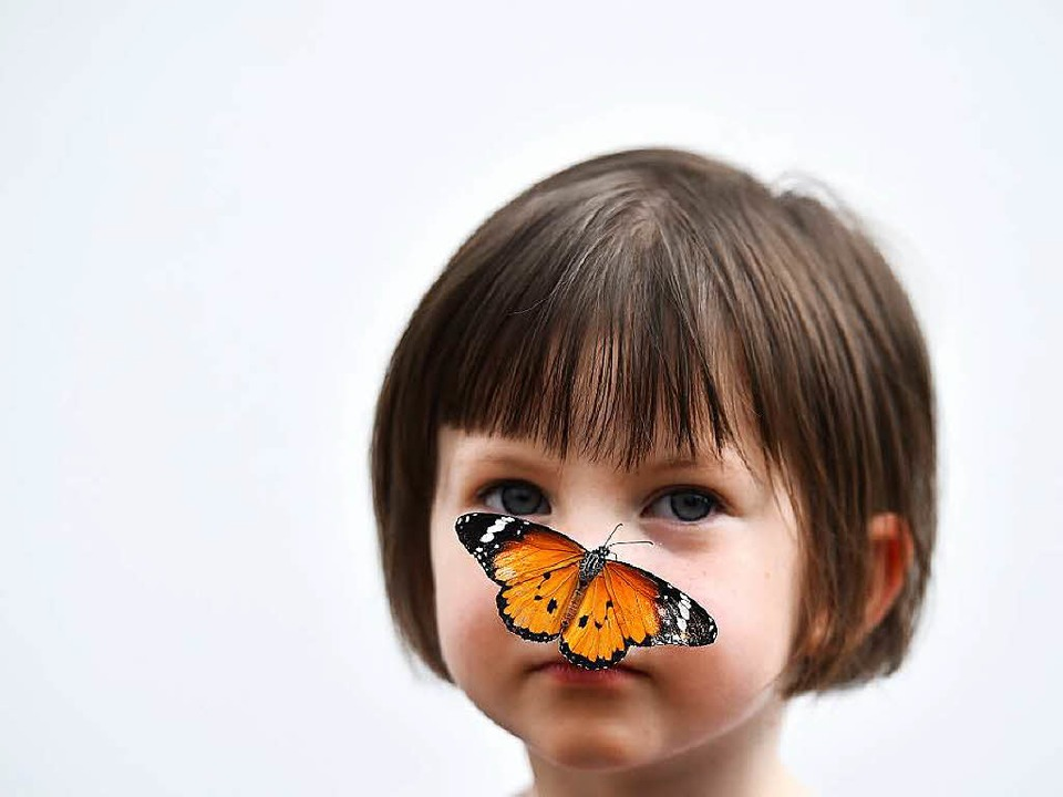 Echt zutraulich:  ein kleiner Monarchf...es Naturhistorischen Museums in London  | Foto: AFP
