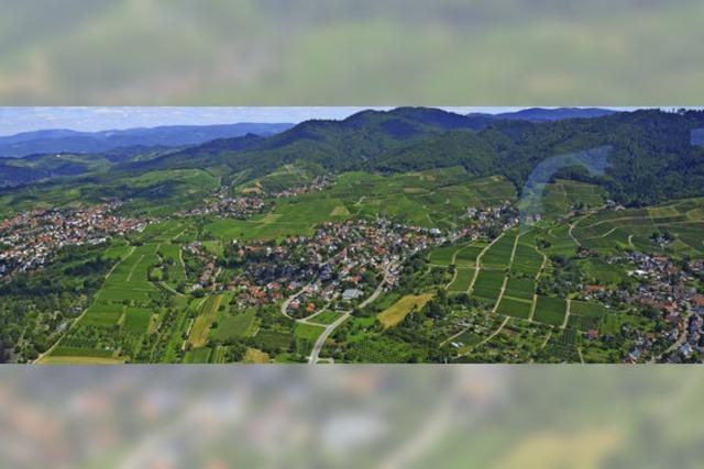 Im Offenburger Rebland gibt es rund 110 Baulücken