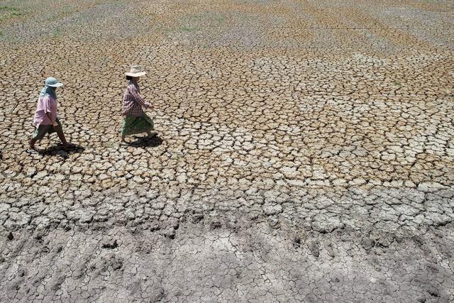 Dürre bremst Wachstum