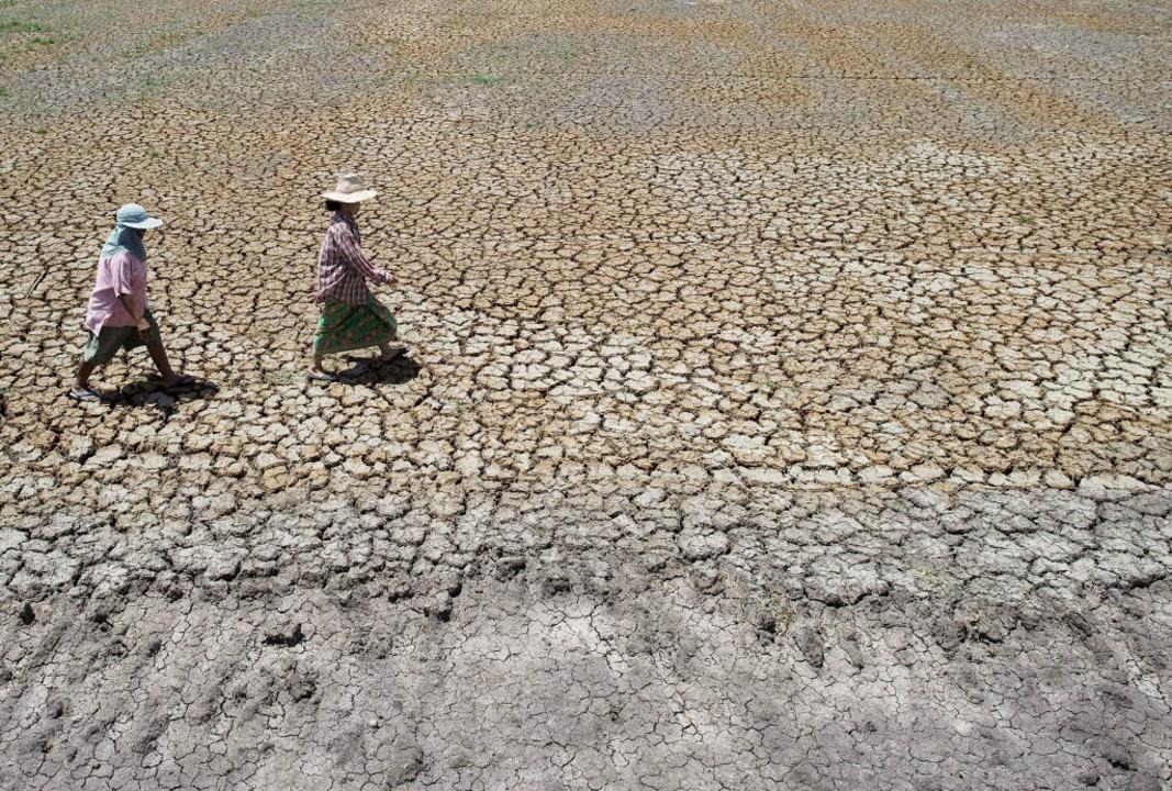 Thailändische Bauern gehen über ein ausgetrocknetes Feld nördlich von Bangkok.    | Foto: AFP