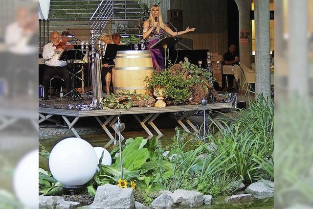 Musik und Wein am Teich