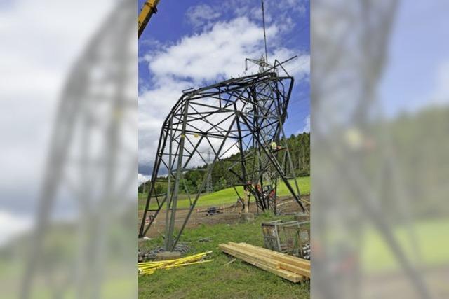 Tornadoschäden an Überlandleitung sind beseitigt