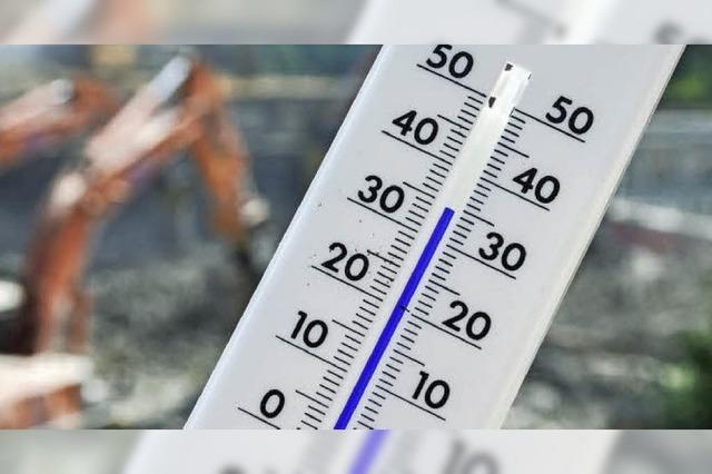 Wie die Hitze-Profis cool bleiben