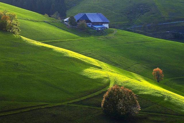 Tourismus im Schwarzwald meldet Rekorde
