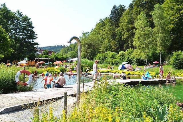 Friedenweiler Freibad soll Naturbad werden