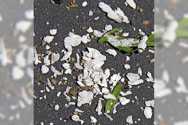 Weiße Flocken: Unbekannte Partikel über Karsau