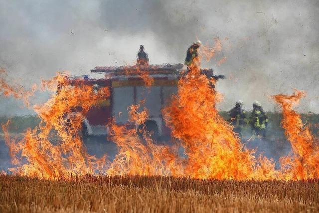 Feld brennt bei Neuried lichterloh – Gaffer sorgen für Autobahnstau