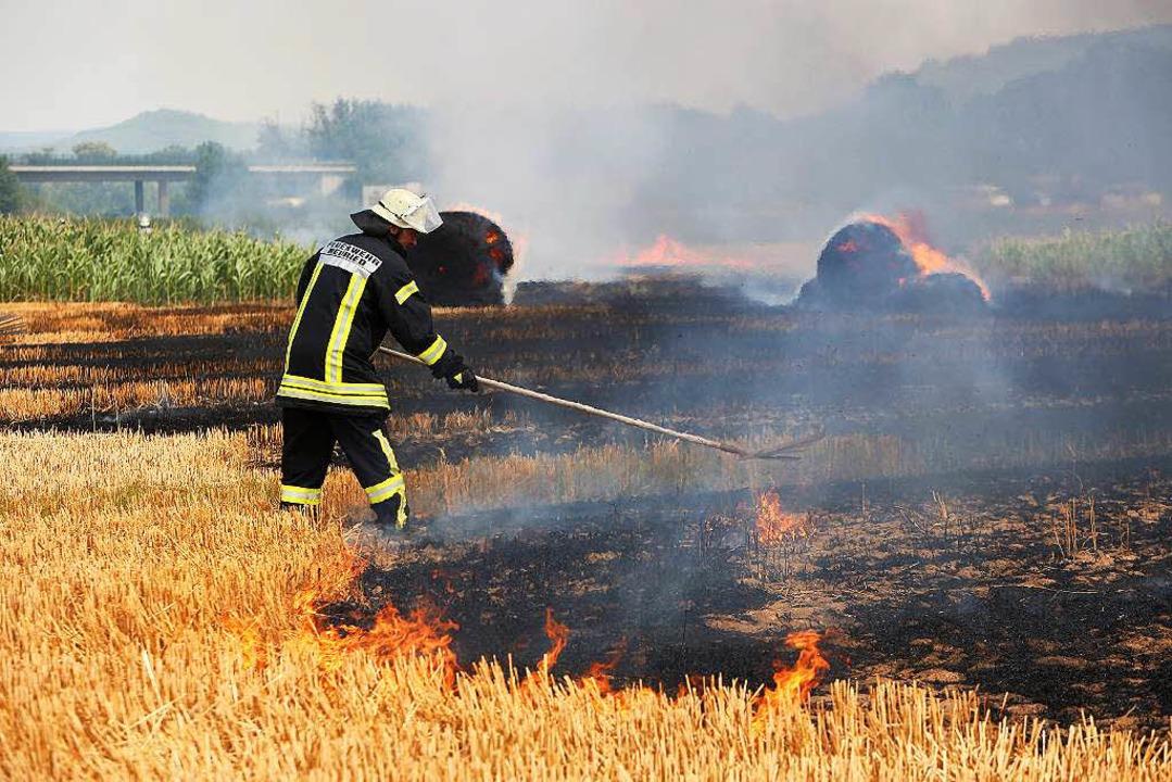 Feld brennt bei Neuried  lichterloh  | Foto: Christoph Breithaupt