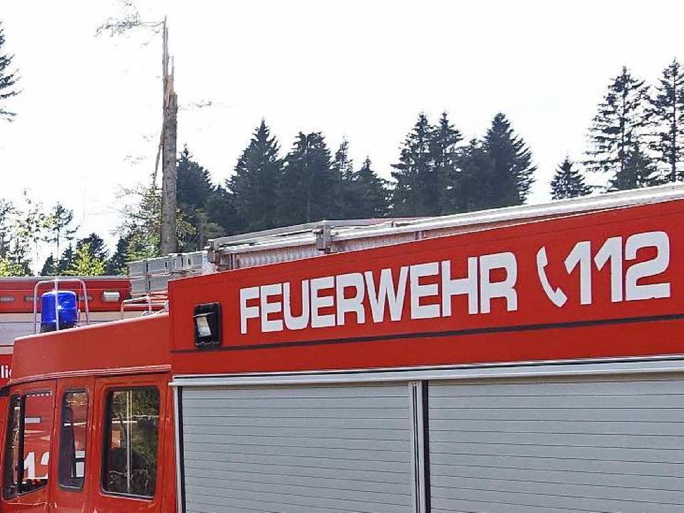 Einsatz für die Feuerwehr. (Symbolbild)    Foto: Olaf Thor