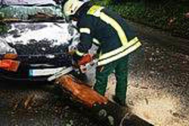 Drei Feuerwehr-Einsätze nach Gewitter in Waldkirch