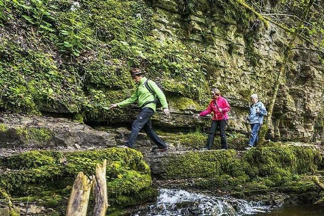 Wandern in der Wutachschlucht: Seltenes Naturerlebnis