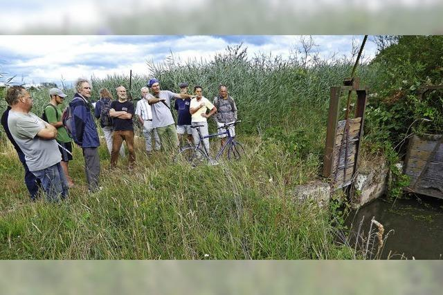 Einstige Wässerung der Wiesen ist wieder angesagt