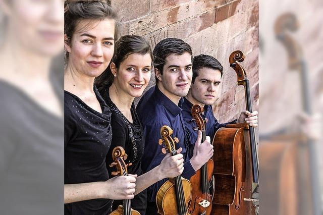 Das Aris-Quartett spielt bei der Staufener Musikwoche