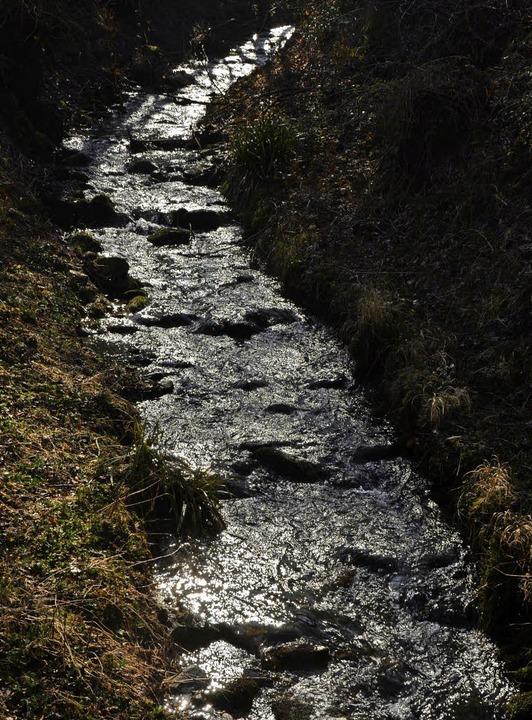 In Au soll ein Rückhaltebecken zum Hochwasserschutz im Hexental entstehen.   | Foto: Tanja Bury