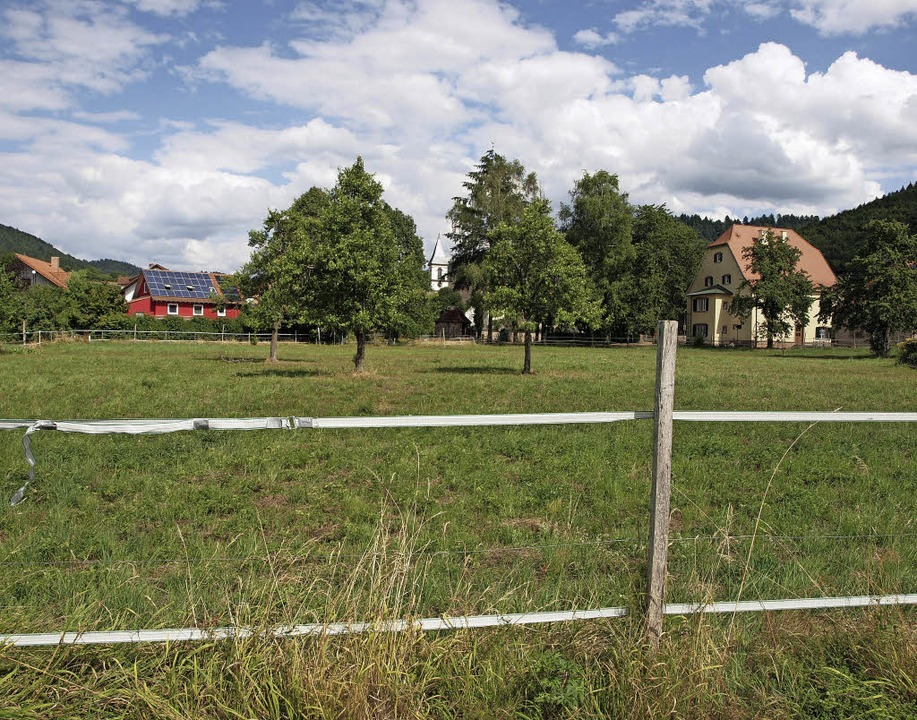 Auf der Fläche der jetzigen Pferdekopp...ame Feuerwehrgerätehaus gebaut werden.  | Foto: Michael haberer
