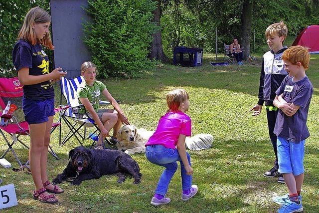 Spielen allein macht den Hund nicht froh