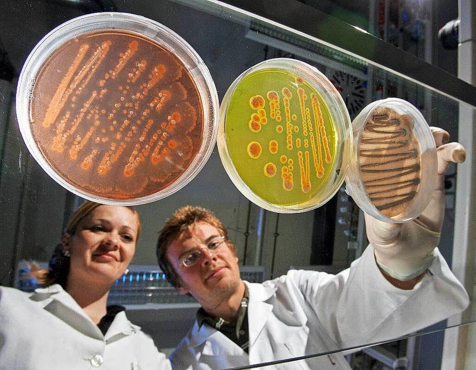 Junge Forscher arbeiten oft unter prekären Bedingungen.  | Foto: Verwendung weltweit, usage worldwide