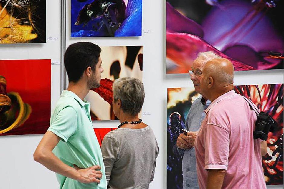 """Kunstwerke unterschiedlichster Stilrichtungen und Techniken gab es bei der """"ART Endingen"""" zu sehen. (Foto: Christiane Franz)"""