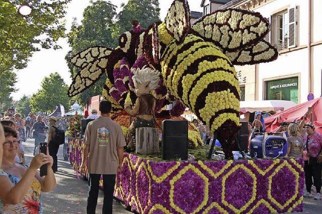 Das Blumenfest Corso Fleurie in Sélestat