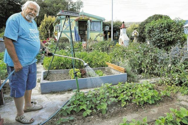 Grüne Gärten trotz großer Hitze