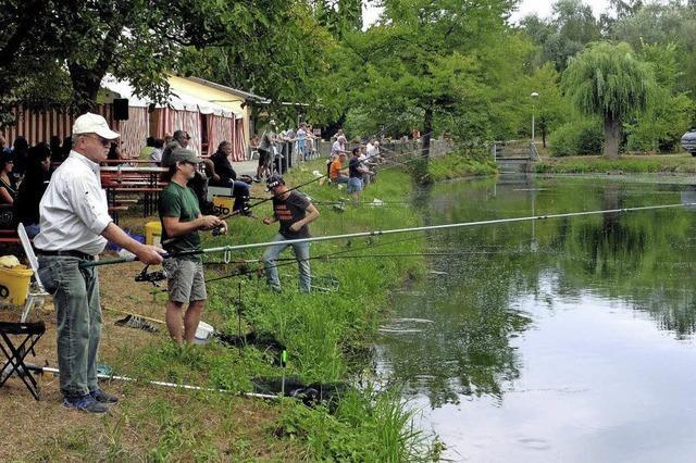 Volksfeststimmung und Fischgerichte