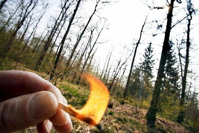 Brenzlige Situation im Wald