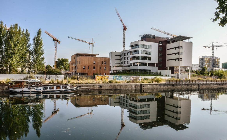 Das Öko-Viertel Danube soll 2019 fertig gebaut sein.     Foto: teli