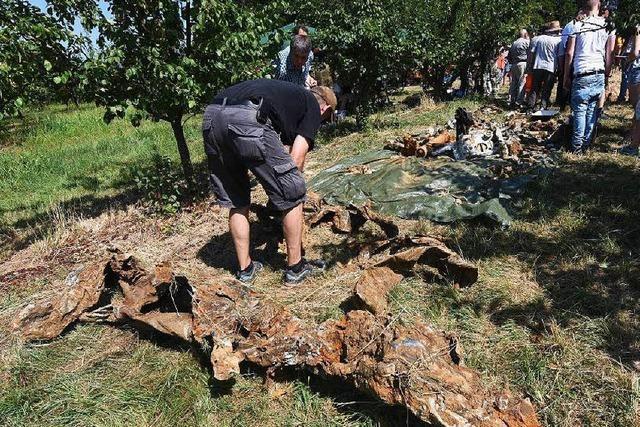 Jagdbomber-Wrack wird nach 70 Jahren geborgen