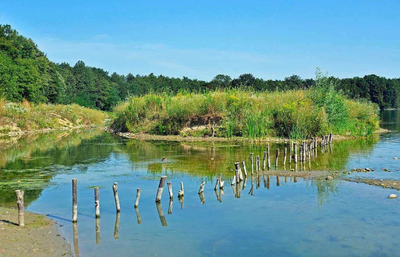 Das Ufer ist umgemodelt, der See hat n...llanlagen – und eine neue Insel.  | Foto: Michael Bamberger