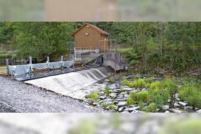 Wehr zwischen Atzenbach und Mambach erhält neue Fischtreppe