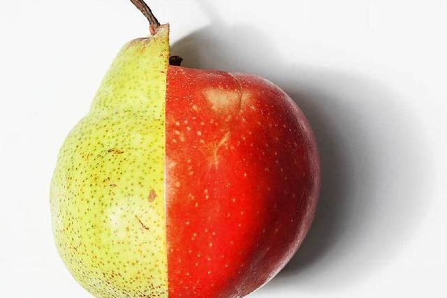 Apfel trifft Birne: Birpfel oder Apfirne?