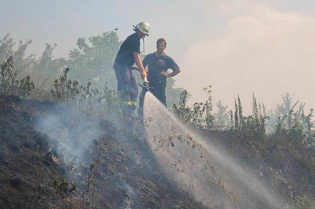 Flächenbrand bei Sulz im Gewann Galgenberg war schnell gelöscht