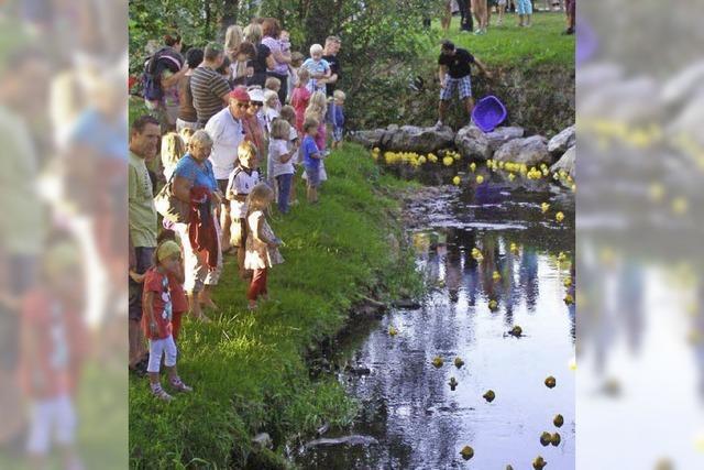Bachfest mit Entenrennen in Friedenweiler-Rötenbach