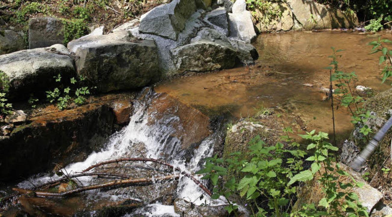 Die Stegmüller nutzten die Wasserkraft des Haselbachs.  | Foto: Marlies Jung-Knoblich