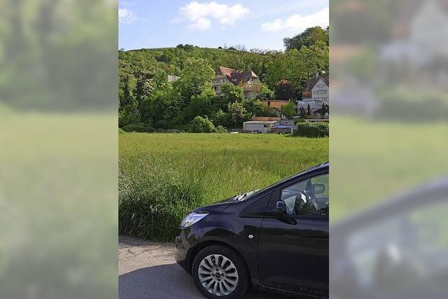 Räte wollen Bewegung im Vollenburgareal