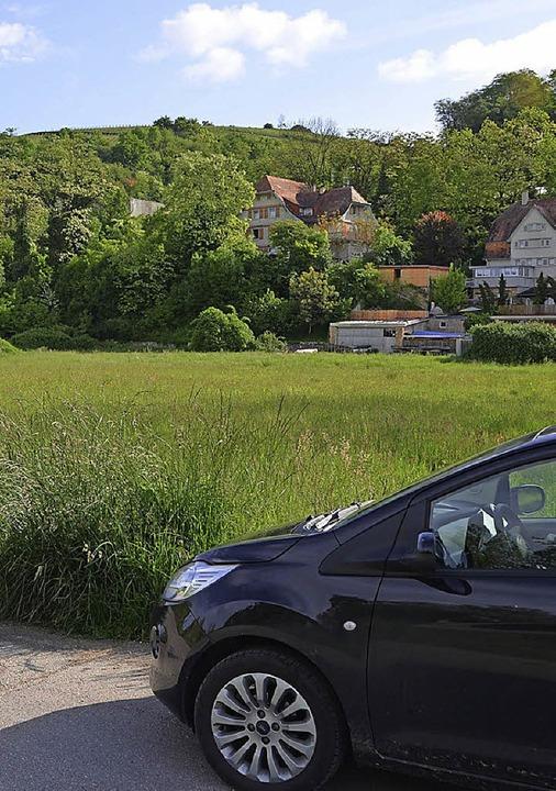 In die Entwicklung des Vollenburg-Area...fordert der Kleinkemser Ortschaftsrat.    Foto: Markus Maier