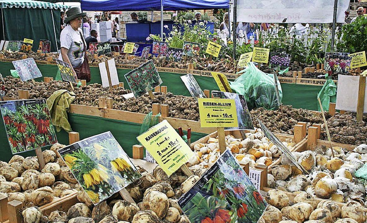 In Inzlingen gibt es am Wochenende das erste Gartenfestival.     Foto: zvg