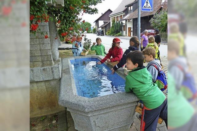 Kinder lernen die heilenden Kräfte der Kräuter kennen