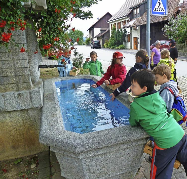Am Brunnen konnten die Kinder die zuvo...iergang gefundenen Kräuter abwaschen.     Foto: zvg