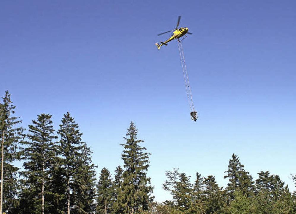 Morgen wird ein Helikopter über die Wälder Prechtals kreisen.     Foto: Archiv